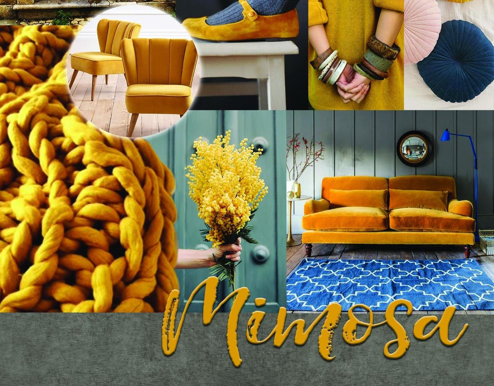 MIMOSA-2-175932-edited